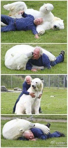 I want a bear!