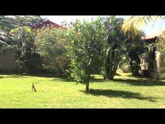 Villaggi Flor de Pacifico COSTA RICA