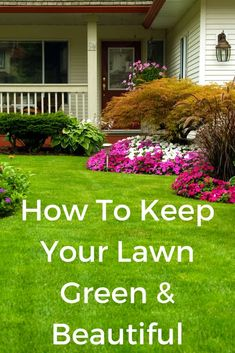 8 easy tips for keeping your lawn green and beautiful. Big Garden, Lawn And Garden, Garden Art, Garden Ideas, Landscaping Tips, Front Yard Landscaping, Gardening For Beginners, Gardening Tips, Lawn Care Companies
