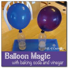 Balloon magic with baking soda and vinegar @ Gift of Curiosity