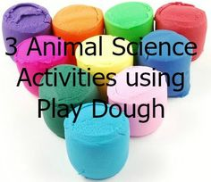 Blog post on 3 different animal science activities that will incorporate with your lesson plans for animal systems.  - OLT