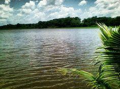 Río Orinoco - Delta Amacuro