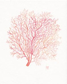 Red coral sea fan - watercolor by Nautic.
