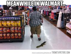 Just walking my gator… And people wonder why I don't go to Walmart???