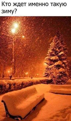let it snow.let it snow.let it snow Winter Szenen, Winter Love, Winter Magic, Winter Christmas, Christmas Time, Kyoto Winter, Merry Christmas, Deep Winter, Winter Park