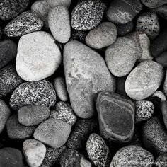 Nature Photography Beach Rocks Fine Art Photograph by Heather Reid... ($10) ❤ liked on Polyvore featuring home, home decor, wall art, photo wall art, black white home decor, beach wall art, ocean wall art and sea home decor