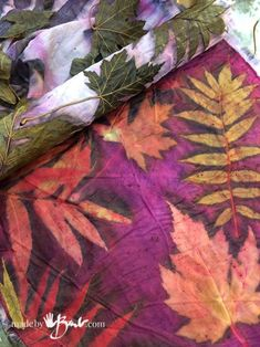 Colourful Cochineal Eco Print - Made By Barb - dyeing with cochineal and eco printing