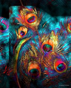 Miss P's Peacock Feathers by coppertrees Peacock Decor, Peacock Colors, Peacock Feathers, Peacock Print, Peacock Photos, Peacock Artwork, Feather Art, Jewel Tones, Beautiful Birds