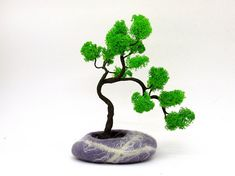 A lot of people love Bonsai trees. If you have a busy life style and a lot of business trip, its difficult for you to have real bonsai and carry about it. You can forgetting to water the tree, not knowing how or what to feed it, not having an adequate location with plenty of natural