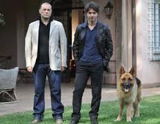 Rex German Tv Shows, German Shepherd Dogs, Fictional Characters, Globe Theatre, Movies, Actor, German Shepherds, Fantasy Characters
