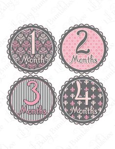 Monthly Onesie Stickers - Kristi - Paris Chic in Pinks and Greys - Great Baby Shower Gift and Photo Prop Baby Month Stickers. $9.00, via Etsy. Want these!