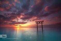 Morning Glow - Pinned by Mak Khalaf Taken by Nikon D800 Landscapes JapanShrineSunrise by KenjiYamamura