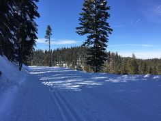 Badger Pass Ski Area, Yosemite National Park