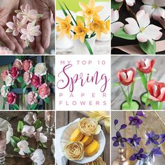 I am counting down the days to spring! Here is a list of my top 10 favorite paper designs for spring flowers. Download the templates and start crafting!  MichaelsMakers Lia Griffith