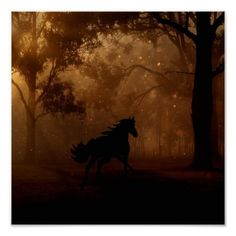 Free Image on Pixabay - Forest, Trees, Night, Horse, Gallop Fantasy Forest, Forest Fairy, Celtic Fantasy Art, Brothers Grimm Fairy Tales, Horse Galloping, Black Stallion, Horse Silhouette, Fantasy Paintings, Edgar Allan Poe