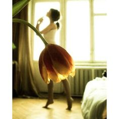 I just can't resist the pure beauty of a ballerina.