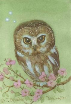 The world of James Browne,artist creater of ( saw whet )the owl and others!!! Hoot an Holler site.