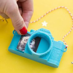 How cute is the vintage-meets-modern camera ornament?
