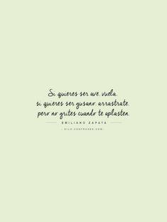 Si quieres ser ave, vuela. Si quieres ser gusano, arrástrate. pero no grites cuando te aplasten. - Emiliano Zapata