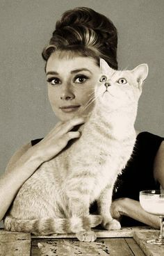 Audrey Hepburn … Plus - Virginie Ruiz - - Senior Picture Poses, Senior Pictures, Audrey Hepburn Photos, Audrey Hepburn Style, Celebrities With Cats, Celebs, The River, Saint Yves, Son Chat