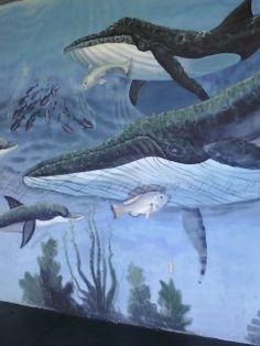 Fish mural in Titusville
