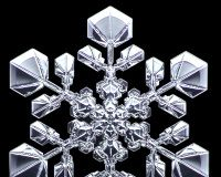 Designer Snowflakes -  I grow my own snow crystals in the snowflake lab, where I can create my own designs, including some you will not find in nature. Click here to see how this is done - SnowCrystals.com