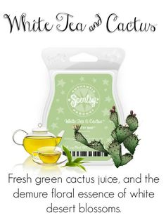 Follow me on Facebook for new products, sales and even FREE samples! www.Facebook.com/TammySellsScentsy