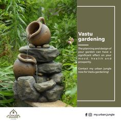 The planning and design of your garden can have a significant effect on your mood health and prosperity.  Contact my urban jungle now for Vastu gardening! . . #myurbanjungle #vastugardening #vastugarden #landscaping #chandigarh #panchkula #mohali #plants #green #getmyurbanjungle