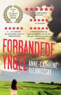 Vi møder i Anne-Cathrine Riebnitzsky gribende fortælling Lisa, som er på vej hjem fra sin tjeneste som efterretningsofficer i Afghanistan. I flyet sidder hun ved siden af en mand, som hun fortæller hele hendes families barske historie til.