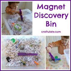 Magnet Discovery Bin