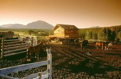 Corral at sunset - Echo Valley Ranch and Spa Great Places, Places To Visit, Small Luxury Hotels, Luxury Suites, Go Glamping, Guest Ranch, Valley Ranch, The Ranch, Horseback Riding