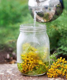 Torju ekologisesti home ja tuholaiset puutarhasta – 8 reseptiä Bird Feeders, Gardening Tips, Countryside, Diy And Crafts, Landscape, Outdoor Decor, Green, Flowers, Vegetable Garden