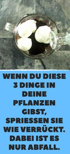 Rasen Beet Steine|Ber 1000 Ideen Zu Rasen Auf Pinterest Rasenpflege ...