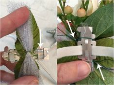 DIY Wrist Corsage - Step 9 Learn how easy it is to make a beautiful DIY Wrist Corsage made with blush roses and hypernicum berries. It is perfect for homecoming or prom. Wrist Corsage Wedding, Prom Corsage And Boutonniere, Diy Boutonniere, Wrist Corsage Diy, Diy Corsages, Wedding Bouquets, Homecoming Flowers, Homecoming Corsage, Prom Flowers