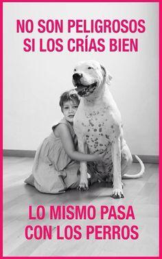 #doglovers