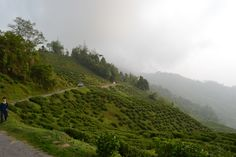 Darjeeling : One of the most popular Indian Hill Stations. Darjeeling : A joyous hill retreat once upon a time for the Britishers. Darjeeling : From where one sees the sun set on the Twin Peaks of Kanchenjunga. Darjeeling : A Haven for Artifacts Shoppers. One Desination, Many Facets....That's Darjeeling. Fellow Terrainspotter Saurav takes you through his journey of rediscovering Darjeeling