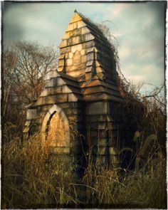 A recent expedition to an abandoned cemetery...Mount Moriah, in Philadelphia.  ...photo: Stephen Spera