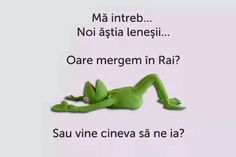 Cand ti-e lene si sa mergi in Rai - Sugubat Stupid Funny, Funny Texts, Funny Jokes, Hilarious, Choreography Videos, Sarcastic Quotes, Life Humor, Funny Pins, Really Funny