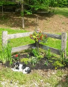 Booth BARN LUMBER CORNER FENCE This is what I want around the garden shed landscaping shed landscaping landscaping flower beds landscaping gravel of shed landscaping Garden Yard Ideas, Diy Garden Decor, Lawn And Garden, Garden Projects, Fence Garden, Garden Hose, Farmhouse Landscaping, Front Yard Landscaping, Corner Landscaping Ideas