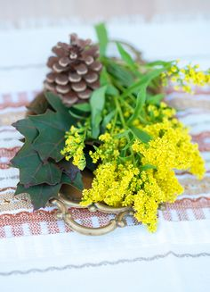 Autumn Colors ♥ Есенни цветове   79 Ideas