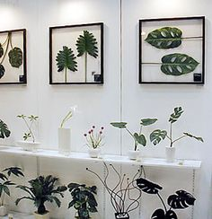 【楽天市場】Leaf Panel リーフパネル:ARS'ONLINE Gallery Wall, My Favorite Things, Frame, Home Decor, Picture Frame, Decoration Home, Room Decor, Frames, Home Interior Design