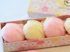 JAPANESE STYLE CHOCOLATE : KOUHAKU TAI CHOCO / CHOCOLATEI