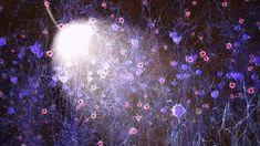 Toward Treating Alzheimer's Disease with Brain Waves | The Scientist Magazine®