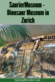 SaurierMuseum - Dinosaur Museum in Zurich Switzerland Road trip with kids | things to do in Switzerland | Switzerland with kids  | Switzerland for Christmas | Switzerland in winter | Family Travel | Travel with kids