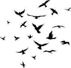 Flock of Birds wall decal sticker Arise Graphics http://www.amazon.com/dp/B005KE038K/ref=cm_sw_r_pi_dp_Kdk5tb1XH8XF3