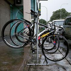 Liberty Street S4 Bike Chain, Fixed Gear, Life Cycles, Cycling, Bicycle, Street, Liberty, Biking, Bike