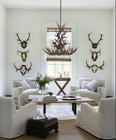 I go nuts for mounted antlers, I love em!!