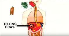 Ciò che mangiamo sembra salutare,ma non è sempre così.Il segreto sull'alimentazione umana.IL VIDEO http://jedasupport.altervista.org/blog/sanita/salute-sanita/segreto-alimentazione-umana/