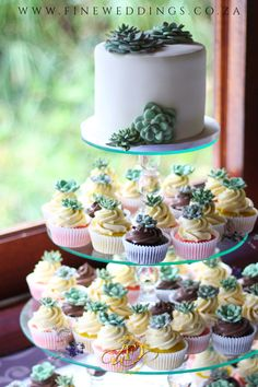 This wedding cake and cupcake combo features a gorgeous sugar succulent design on a glass stand. Wedding Cakes With Cupcakes, Cupcake Cakes, Succulent Wedding Cakes, Succulents, Sugar, Weddings, Glass, Desserts, Food