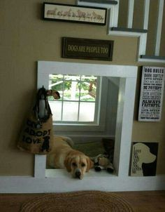 """built-in dog """"house"""" bed under stairwell.  Good idea for mud room under where attic stairs are located."""
